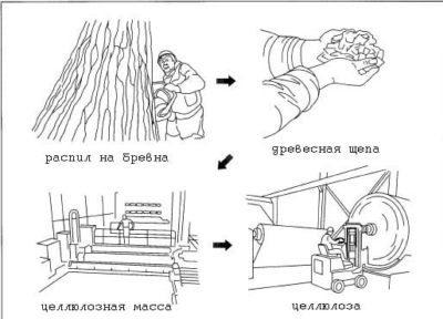 Особенности производства лиоцелла