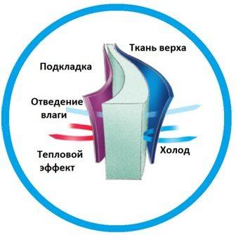 struktura_Isosoft