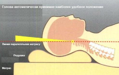 Схема положения головы на ортопедической подушке