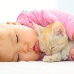 Фазы сна у детей