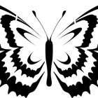 Подборка рисунков бабочки. Они помогут сделать трафареты для стен своими руками