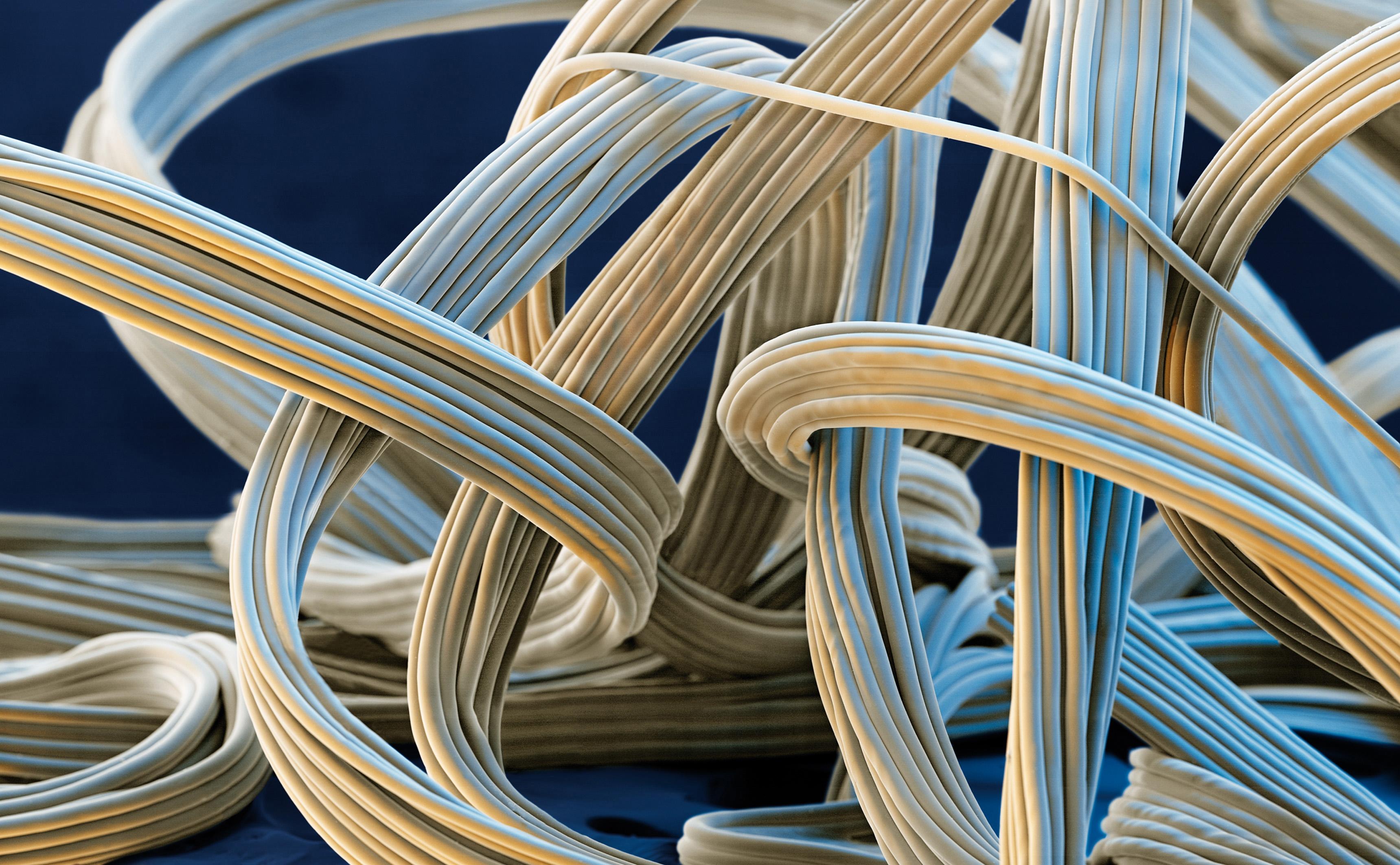 структура ткани эластан
