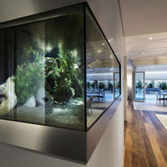 Оформление аквариума: фото-обзор, стильных решений дизайна (80 фотографий)