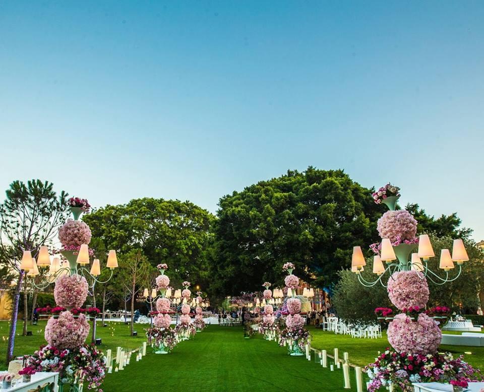 свадебная регистрация в лиловых тонах